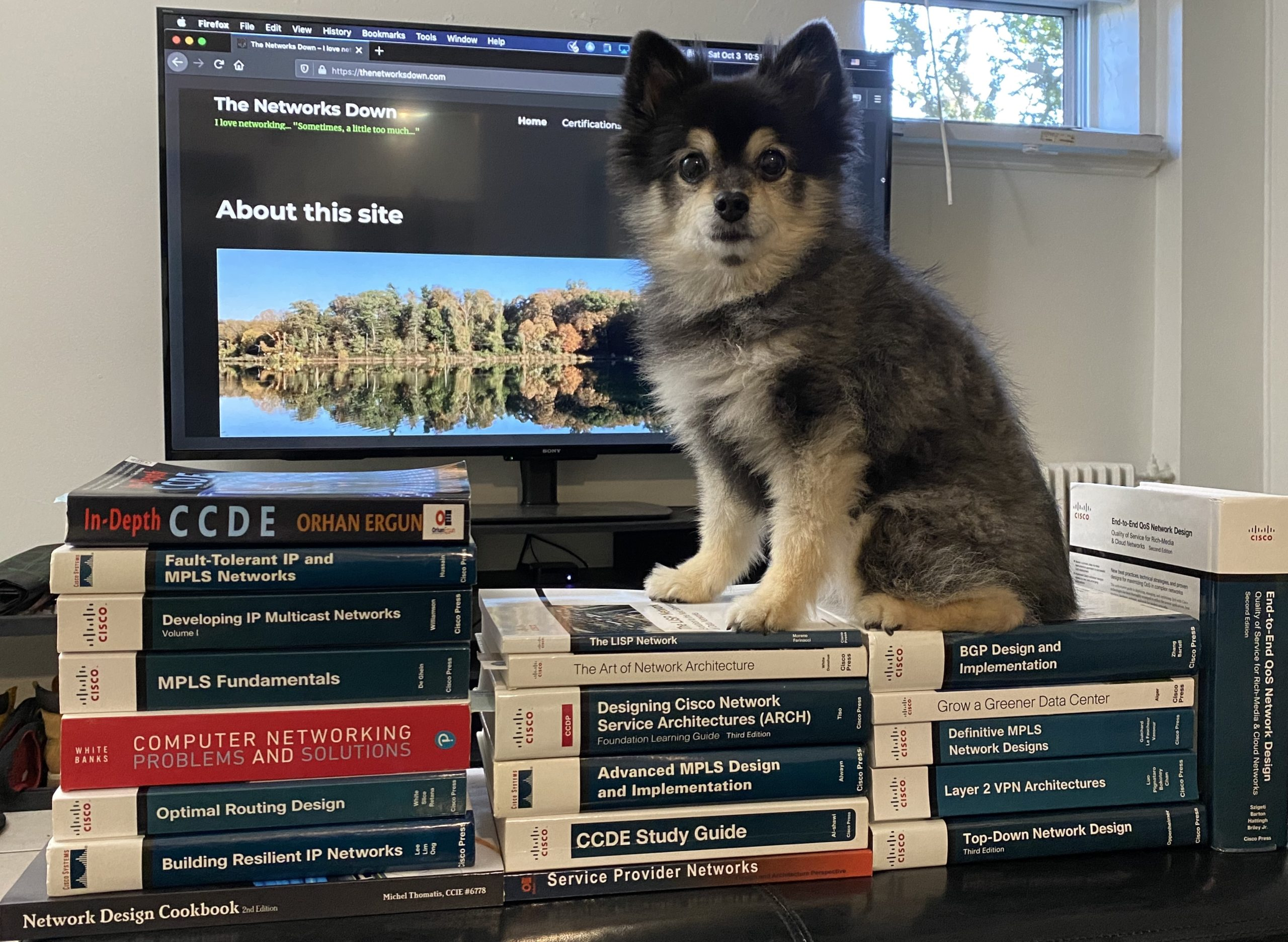 Study Buddy and CCDE Books